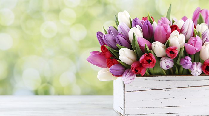 Where to Find the Best Gifts for Mom