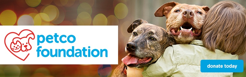 The Petco Foundation page