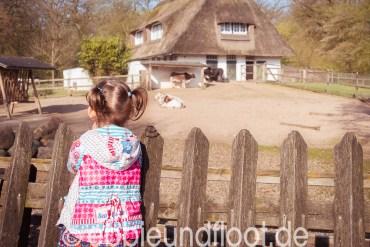 Tiergehe am Bremer Bürgerpark