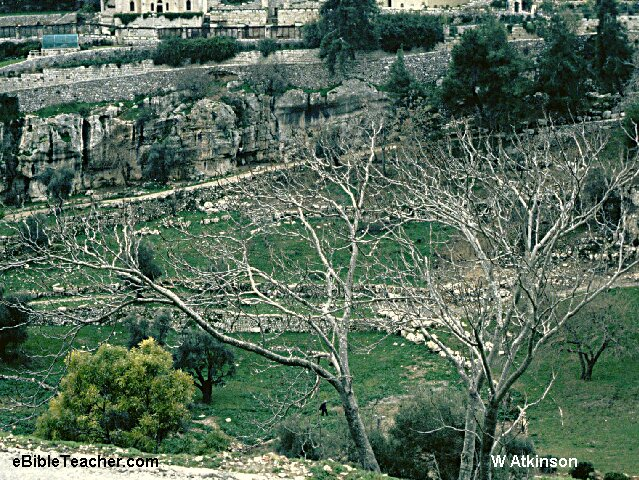 Image result for image of the potter's field in jerusalem
