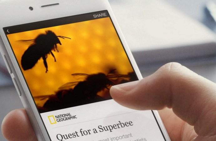 Facebook presentó un plugIn de Instant Articles para WordPress