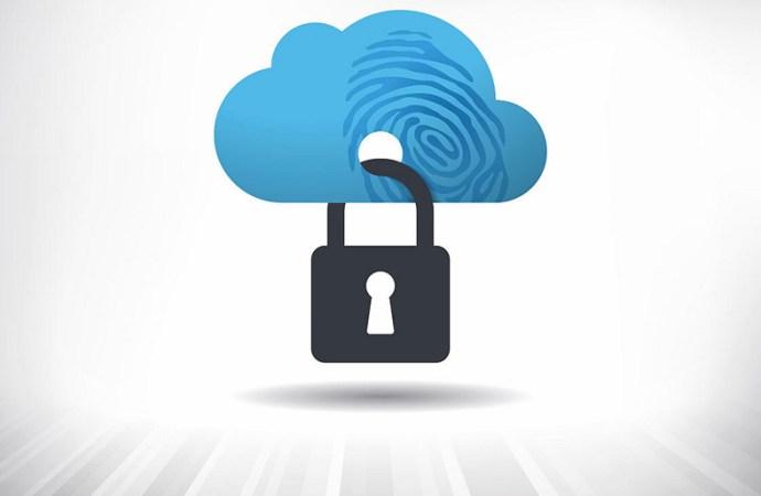 La nube y la vulnerabilidad de los sistemas IT preocupan a directivos regionales