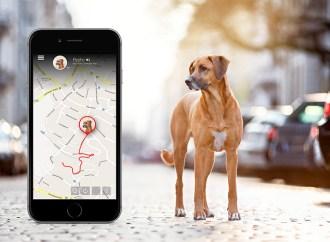 Orange Business Services provee conectividad IoT a dispositivos Tractive