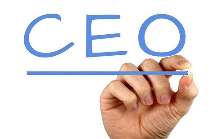 ¿Cómo ser un gran CEO en la era digital?
