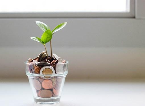 6 consejos para el inversionista novato