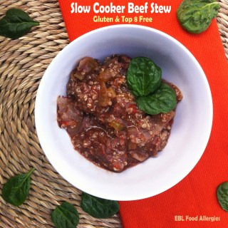 Slow Cooker Beef Stew Recipe – Allergy Friendly