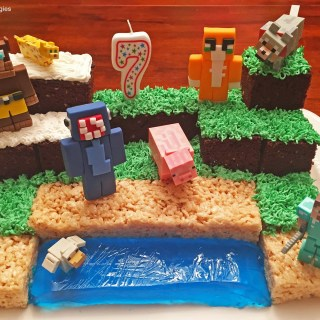 Directions on making a Minecraft Birthday Cake!