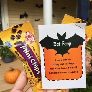 Enjoy Life Foods Chocolate Snack Pack with Halloween Printable