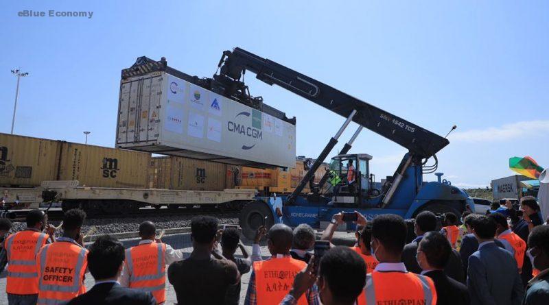 eBlue_economy_ Ethiopian avocados shipped to Europe via Dutch cold chain