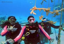 eBlue_economy -Divers