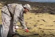 البحر يقذف أطنانا من الكافيار وسمك الرنجة شرقي روسيا (فيديو)