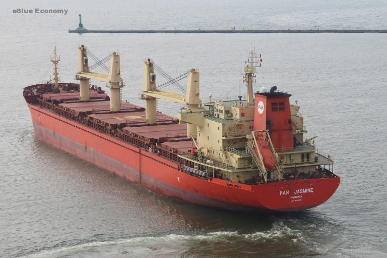 eBlue_economy_Port of New Orleans Finds Invasive Insects in Wood on Deck of Foreign Vesse