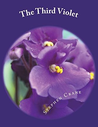 Large book cover: The Third Violet
