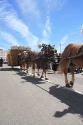 Tres Tombs 12