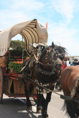 Tres Tombs 6