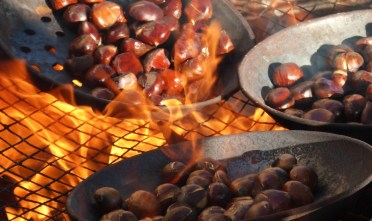 chestnuts roasting for castanyera