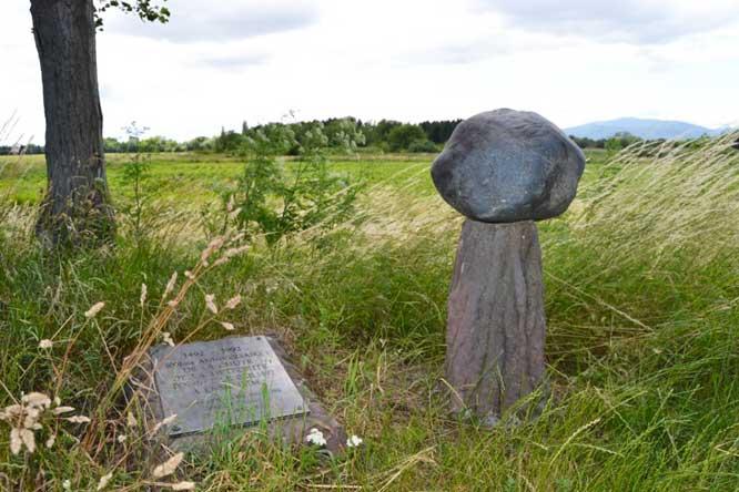 the Ensisheim meteorite