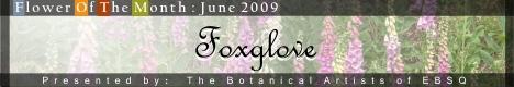 Online Art Exhibit:Flower of the Month: Foxglove