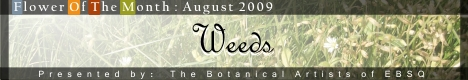 Online Art Exhibit:  Flower of the Month: Weeds