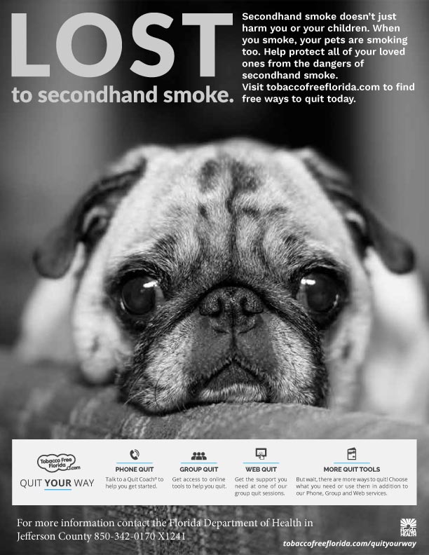 tobaccofreeflorida.com