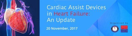 Cardiac Assist Devices ECMO Egypt