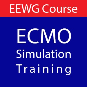 Ecmo-Simulation-Course-egypt-critical care