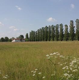 D'ECC Fragilità Territoriali e progetto di paesaggio in ambiti rurali 3.12