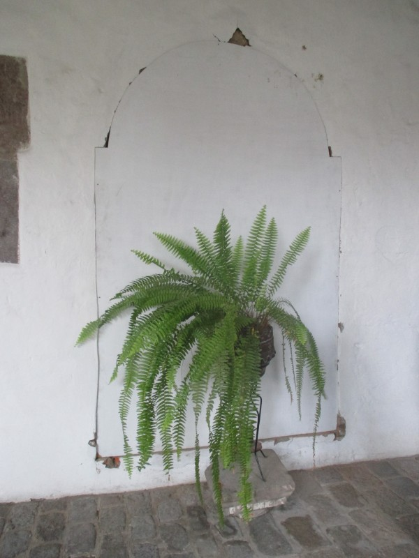 Convent's Interior Walls behind Which Were Recently Discovered Five Additional Incorrupt Bodies of Saintly Sisters