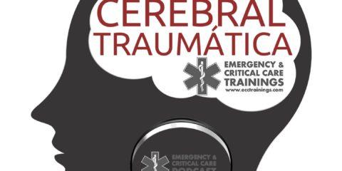 lesíón cerebral traumática ECCtrainings Puerto Rico y República Dominicana