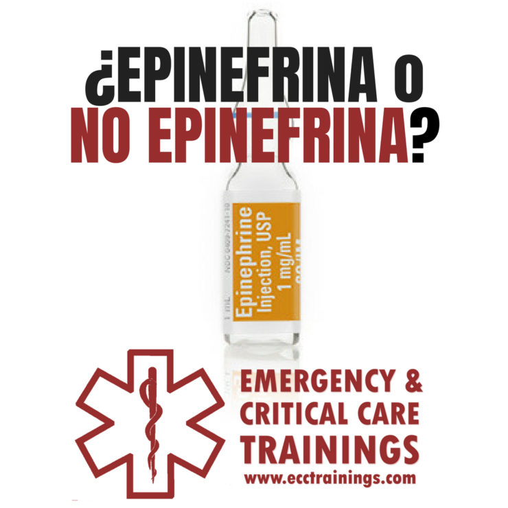 epinefrina en el paro cardiaco fuera del hospital