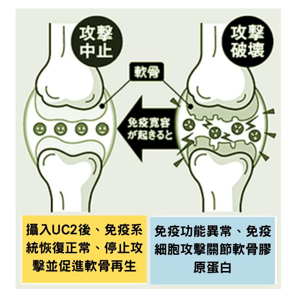 uc2減輕關節痛症