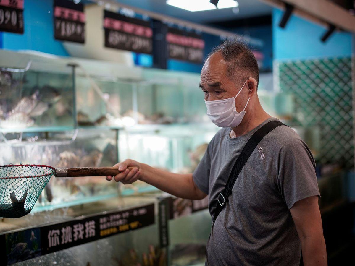 Foto: Mercado de pescado en Wuhan. (Reuters)