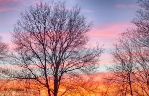 Ondergaande zon roze/oranje