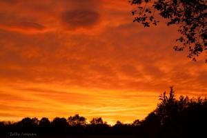 Ondergaande zon oranje