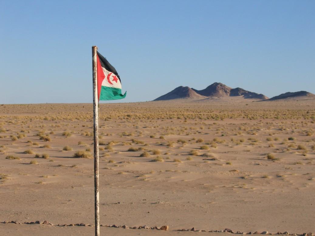 Western Sahara flag in desert