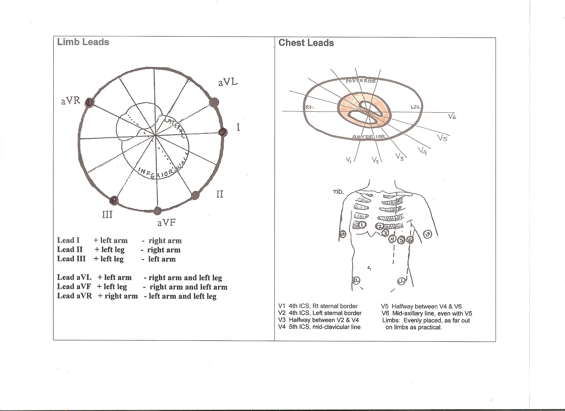 Heart Art Page 3 Ecg Guru