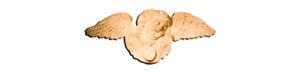 Logo l'Echappée Belle