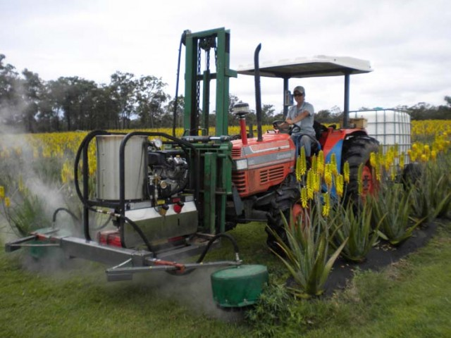 A steam weeder similar to the ones used in Byron Shire. Photo weedsnetwork.com