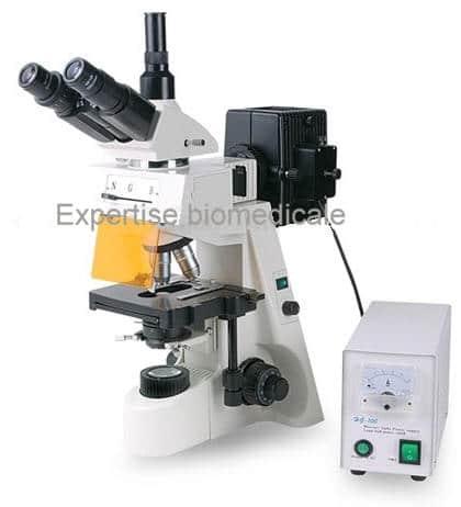 Microscope a fluorescence XYL-146