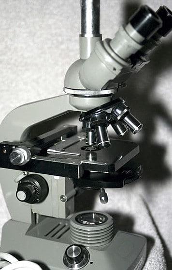 Microscope occasion Olympus pour parodontie