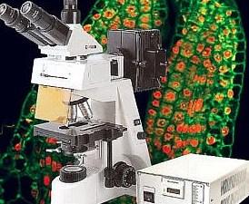 Echographe a epi fluoresence mis 7000