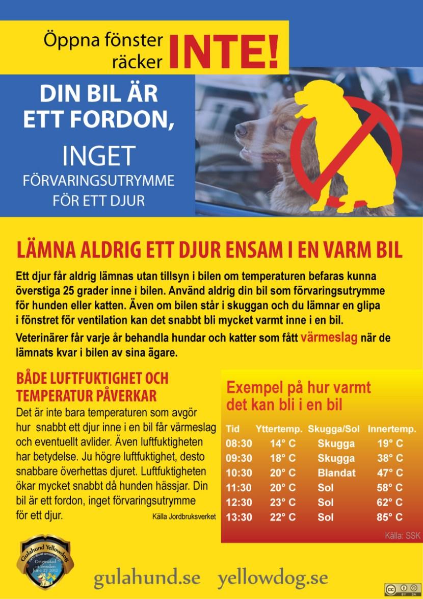 gulahundyellowdog-forvara-inte-djur-i-bil