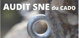 Audit SNE: Bilan