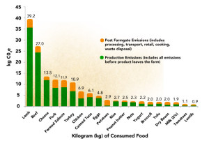 Kilo for kilo, lamb produces the most greenhouse gasses of all protein sources. Source: Environmental Working Group