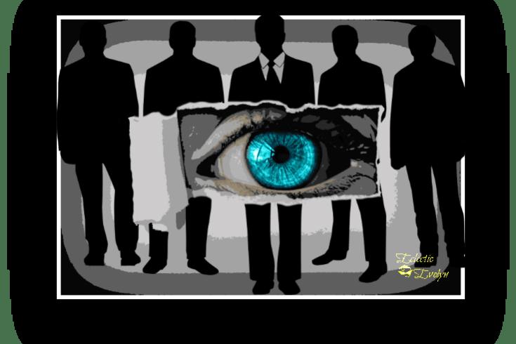 Narcissistic Views EclecticEvelyn,com