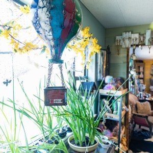 Primitive & Outdoor Gifts at The Eclectic Peacock