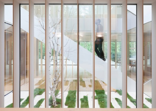 tr-house-pmmt-architects-residential-architecture-barcelona_dezeen_2364_col_4