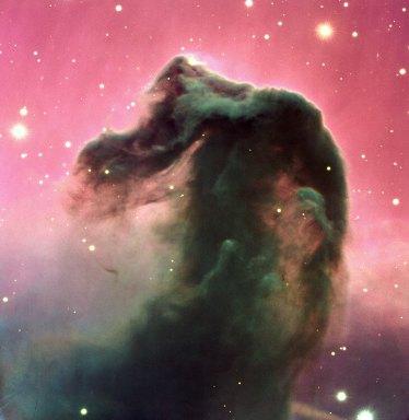 7 The Horsehead Nebula (120 x 116,6 cm) €279,88