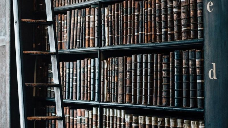 L'idée sortie: Libres en littérature 2016