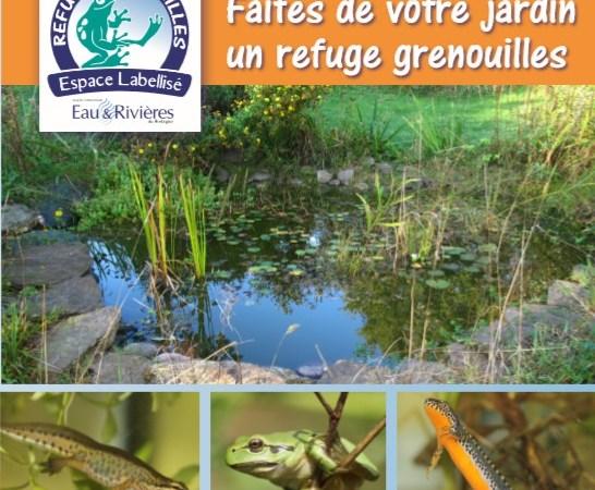 Avec l'association Eau et Rivières de Bretagne, faites de votre jardin un refuge amphibien!